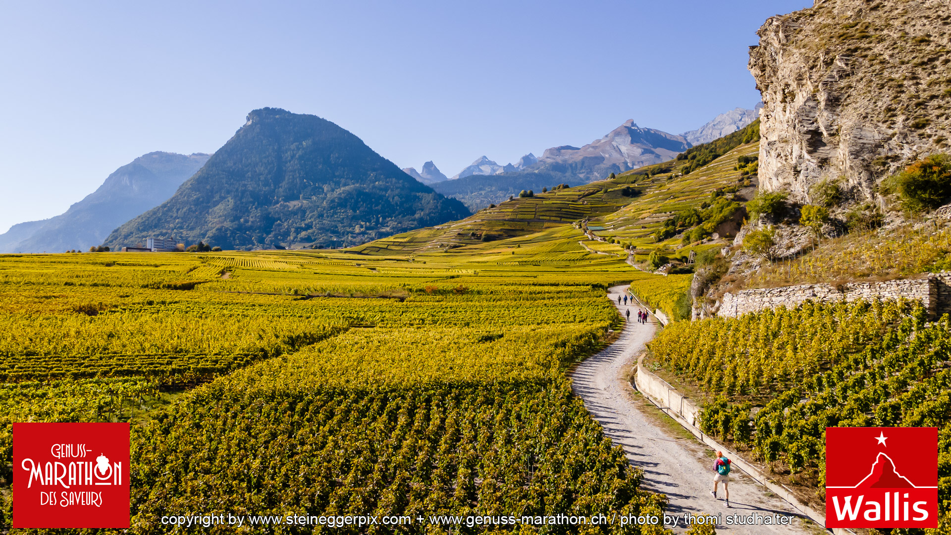 Genuss-Marathon: Wine & Hike