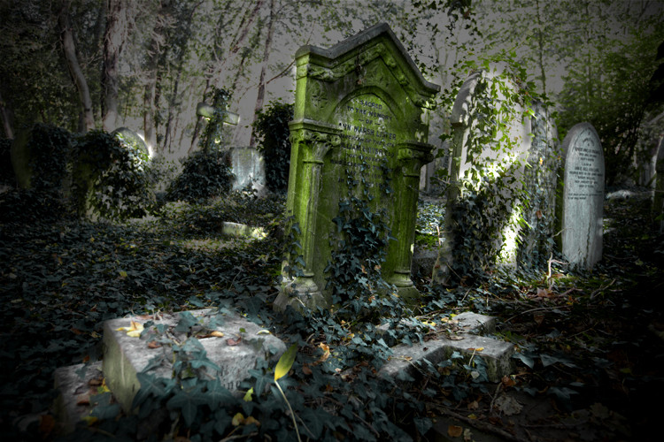 Sacred To The Memory, Highgate Cemetery Park, East Cemetery, London. (2011)