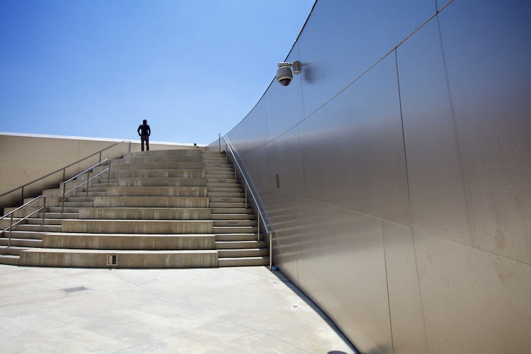 The Walt Disney Concert Hall (detail), by Frank Gehry, Los Angeles, CA, USA. (2013)