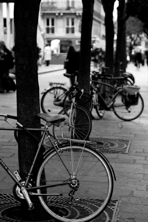 Bicycle. Paris, France. (2009)