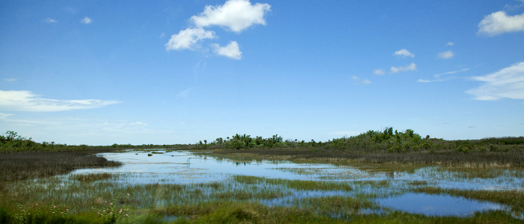 The Everglades National Park