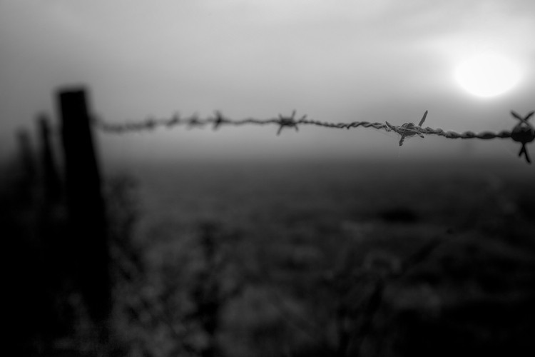Sunrise over a Barbed Wire, nearby Heffingen, Luxembourg. (2010)