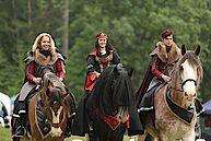 Die mehr als imposanten Shire Horses dürfen auf der Eröffnungszeremonie nicht fehlen. Das ist schon ein beeindruckender Anblick !