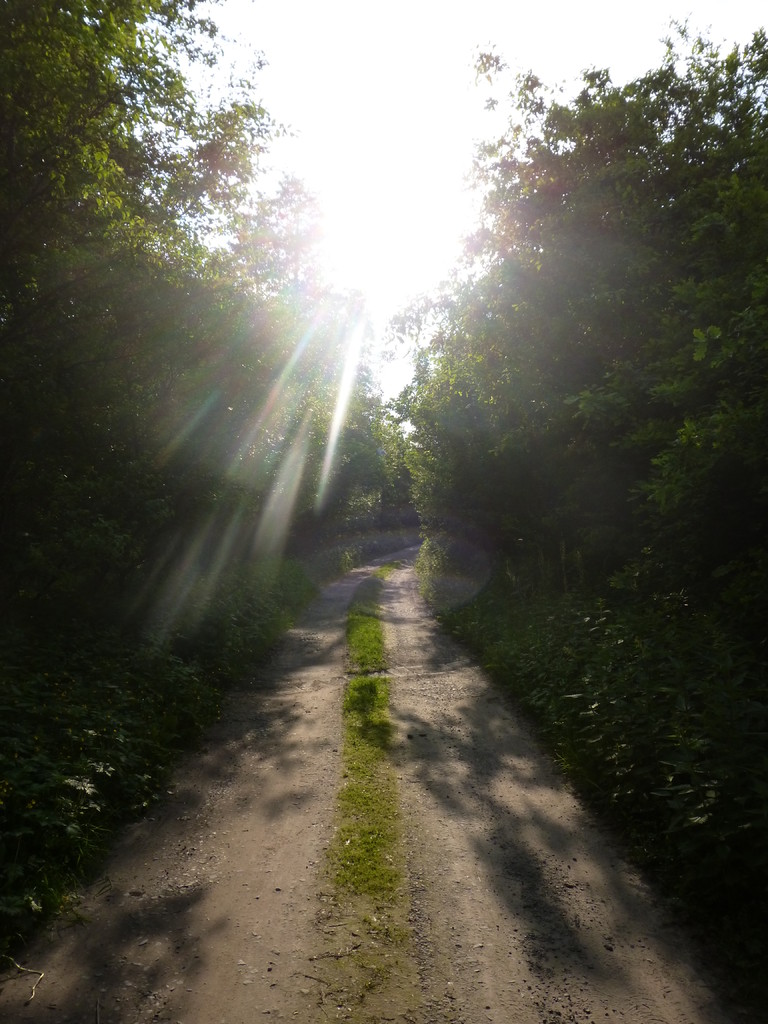 Der Weg zur Sonne!