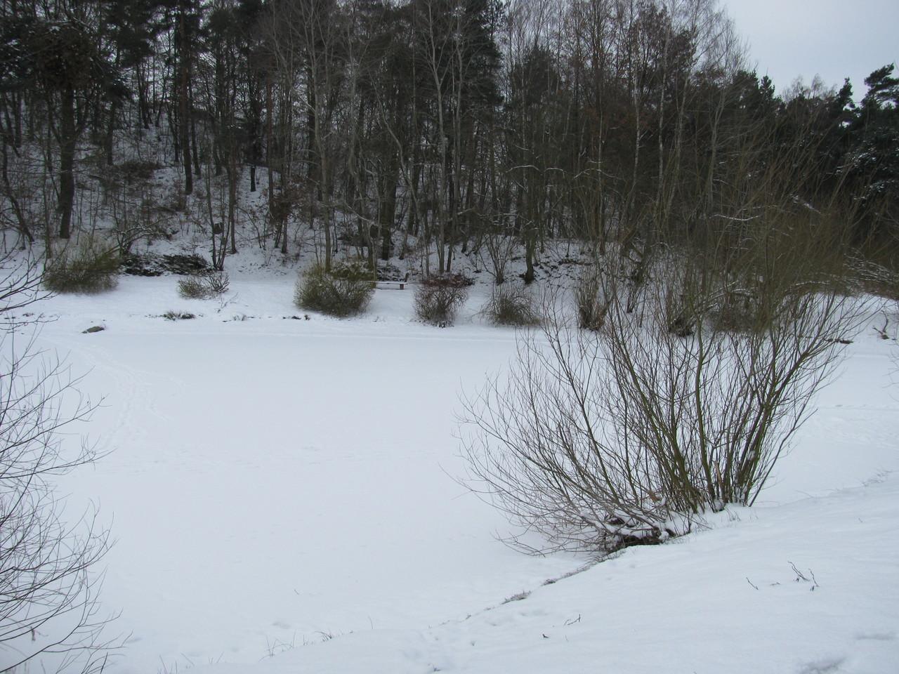 Winter am Stausee