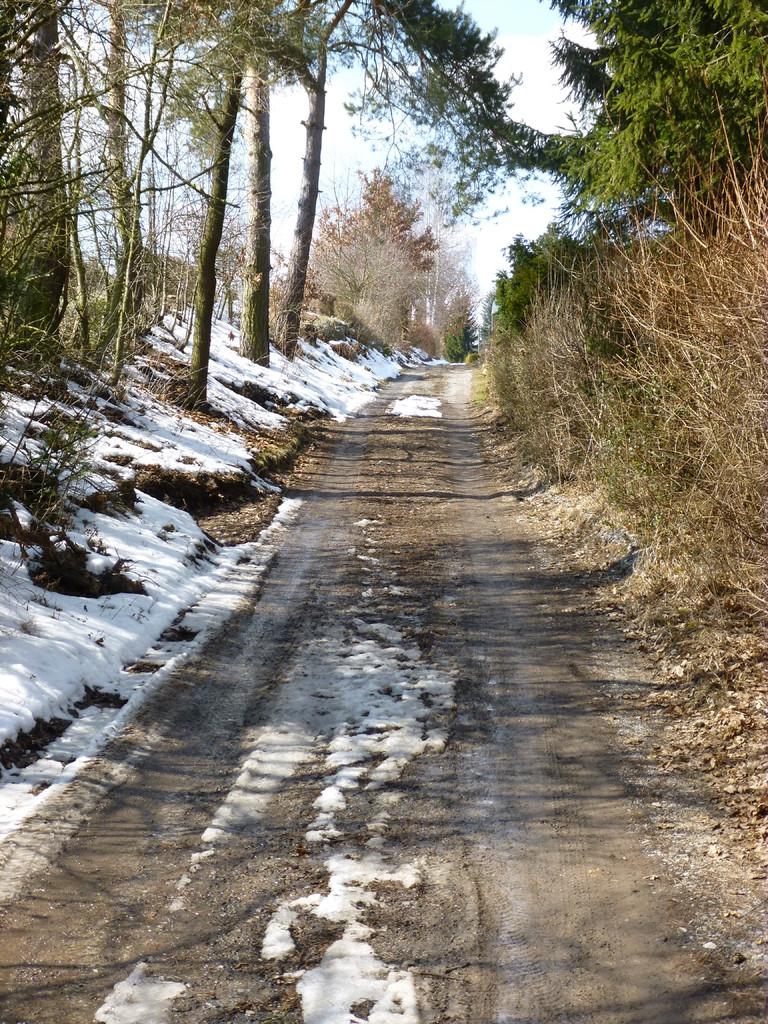 Hohlweg zwischen Winter und Frühling