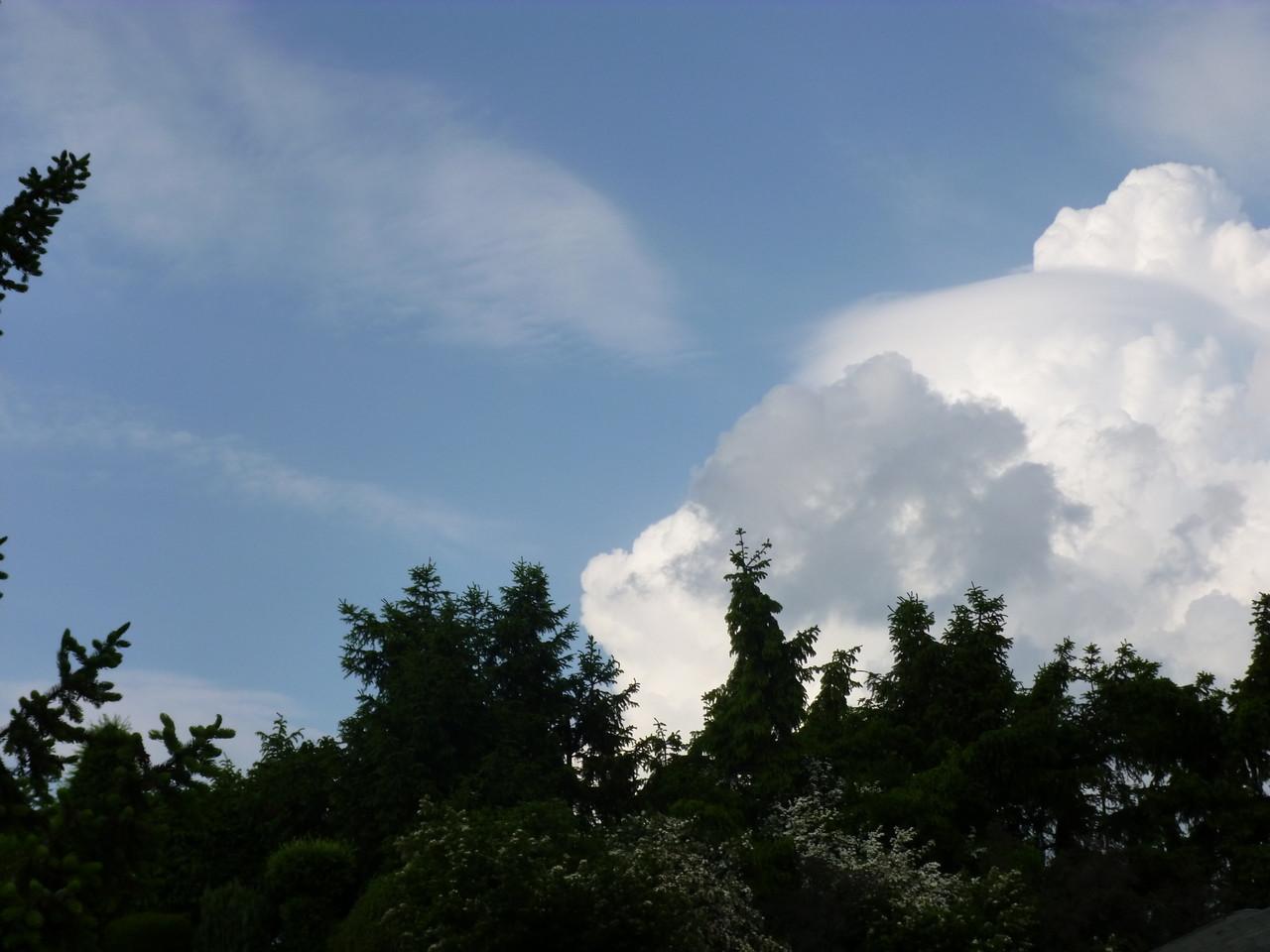 Hinauf zu den Wolken...