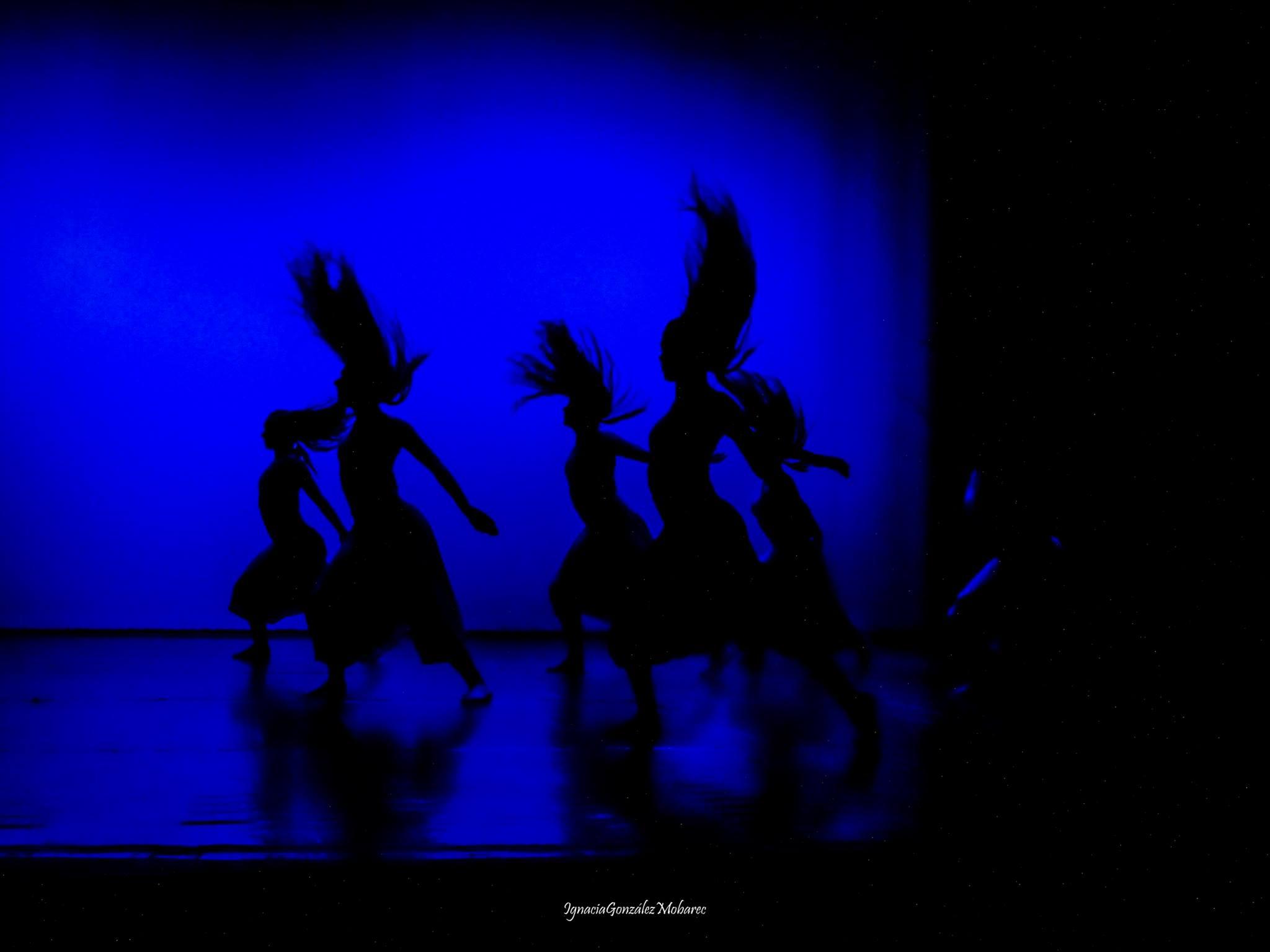 Cía. Mo-Mo Fotografía Ignacia González ene-2018 Quillota danza