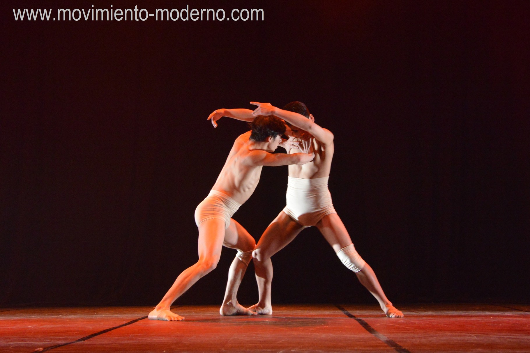 """""""Homus"""" coreografía Cristián Marambio"""