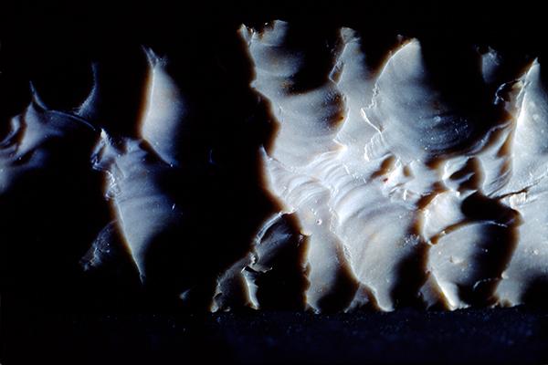 """""""La danse des vagues"""" , feuille de laurier"""