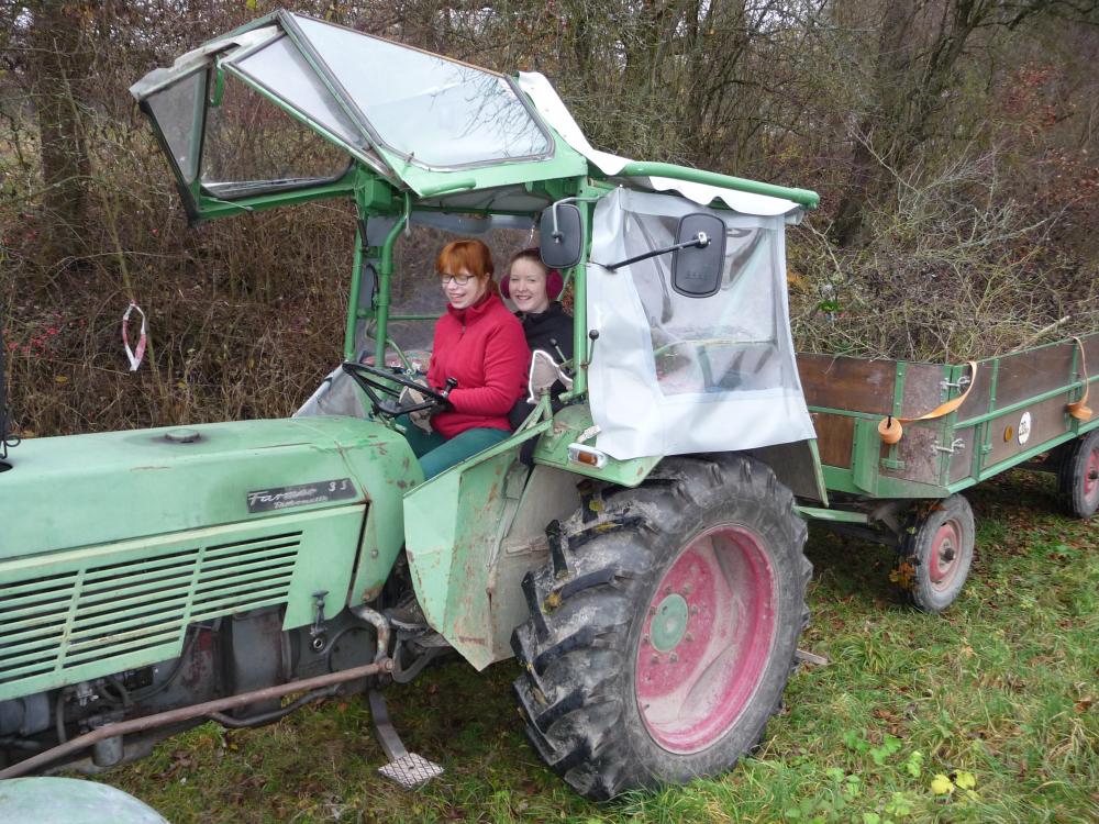 Auch die Jugend hilft fleißig, besonders beim Traktorfahren