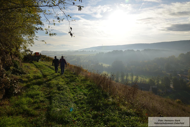 """Herbst mit Blick vom Spitzenberg. In der Ferne (Bildmitte) der """"Michaelsberg"""" im vorderen Zabergäu."""