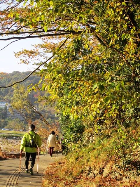 牛越橋を越え八幡周辺へ    対岸では芋煮会♡