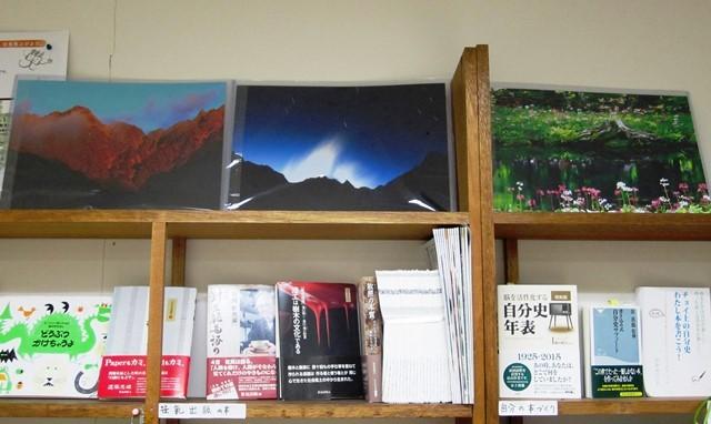 リーダーが1月若林区NW講座開催時 ご参加者より寄贈された素晴らしき写真