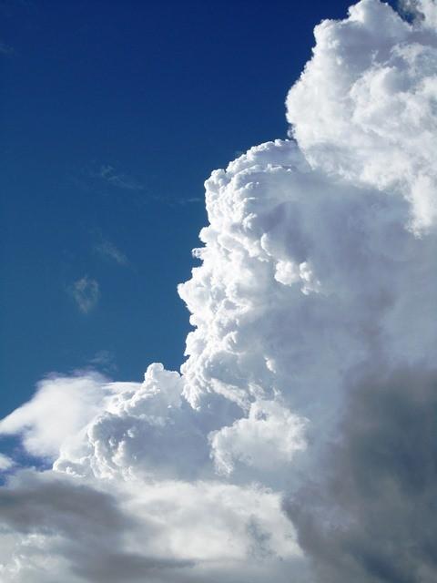 最後の組が もう少しでゴールの所で雷の音と稲妻 見上げると顔の形も見える積乱雲がモクモクとありました