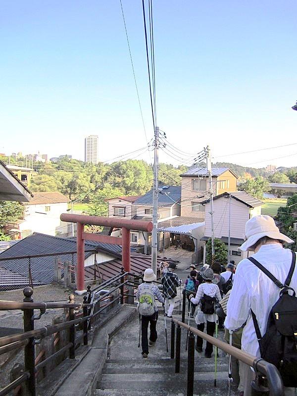西公園への帰り道 仲の瀬橋下にある為朝神社へも寄りました