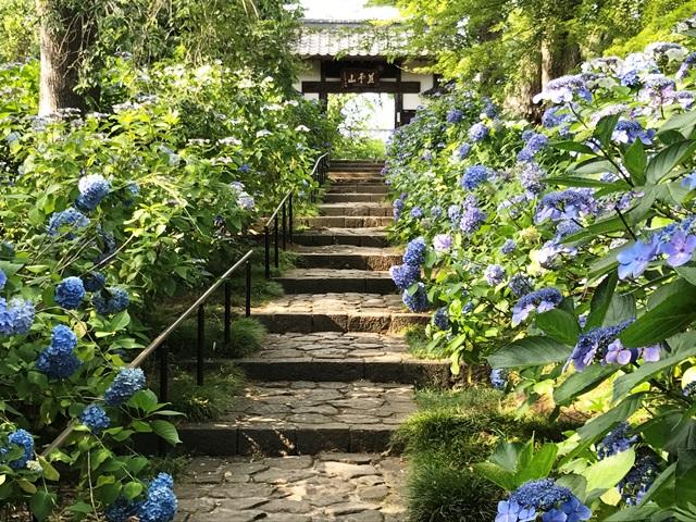 資福寺山門前の静寂