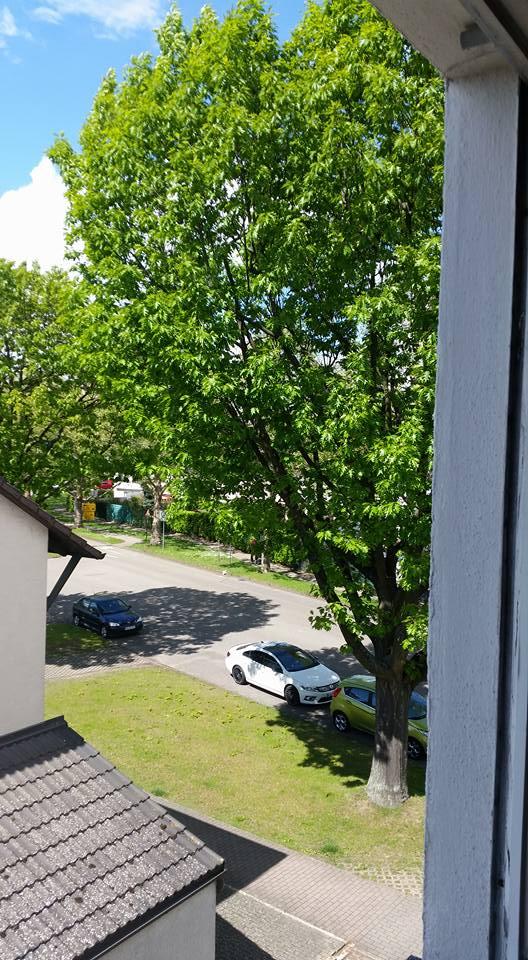 Ausblick mit Parkmöglichkeiten direkt vor dem Haus