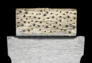 Carat-neues Wandsägensegment