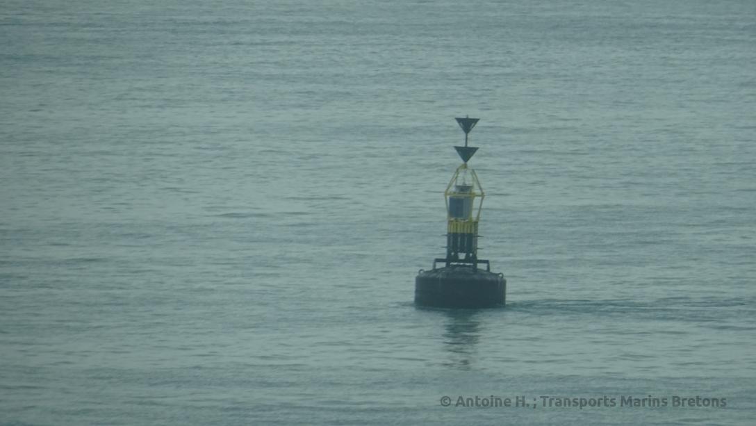 Cardinal buoy