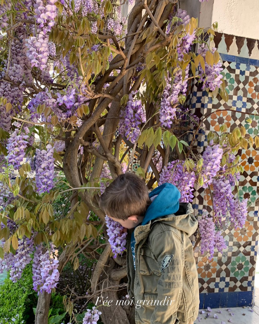 jardins de la Mosquée de Paris