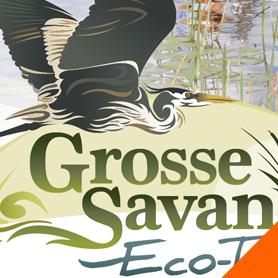 grosse-savanne-eco-tours-graphic-design-lake-charles