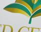 seed center lake charles louisiana logo design
