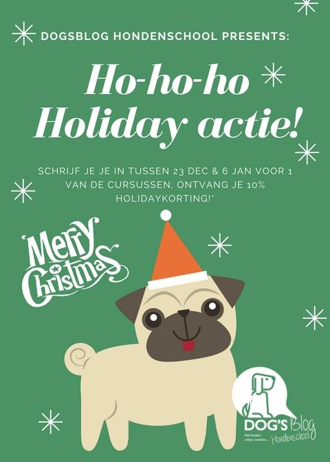 puppycursus hondenschool nunspeet harderwijk hondentraining kerstmis