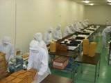 クリーンルーム内での検品・流通加工作業