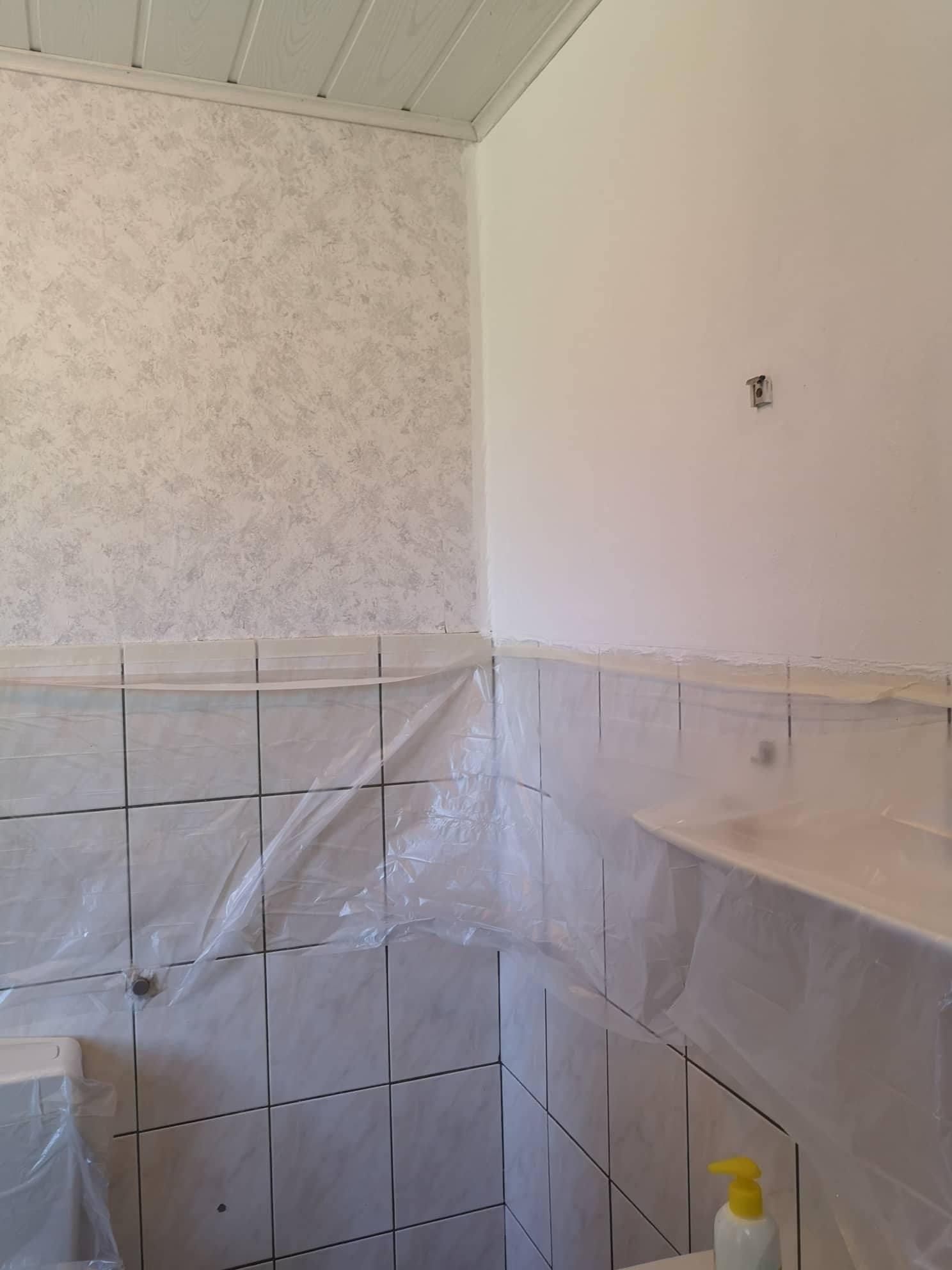 Einer der Toilettenräume halb gestrichen