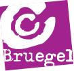 Centre Culturel Bruegel