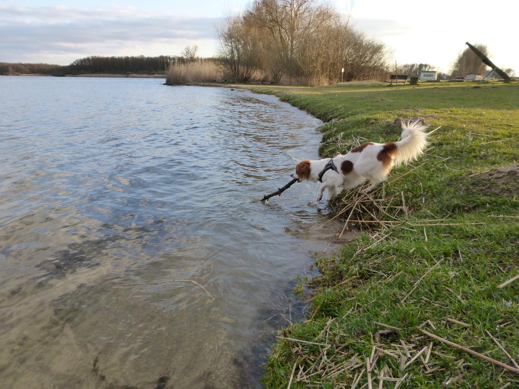 """""""JAAAAAA! Jetzt hab ich dich!""""--------- Und nur mit einem Bein im Wasser!!!"""