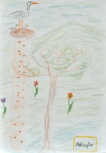 Philipp Schirn Storchennachwuchs Buntstift auf Papier 30cm * 40cm