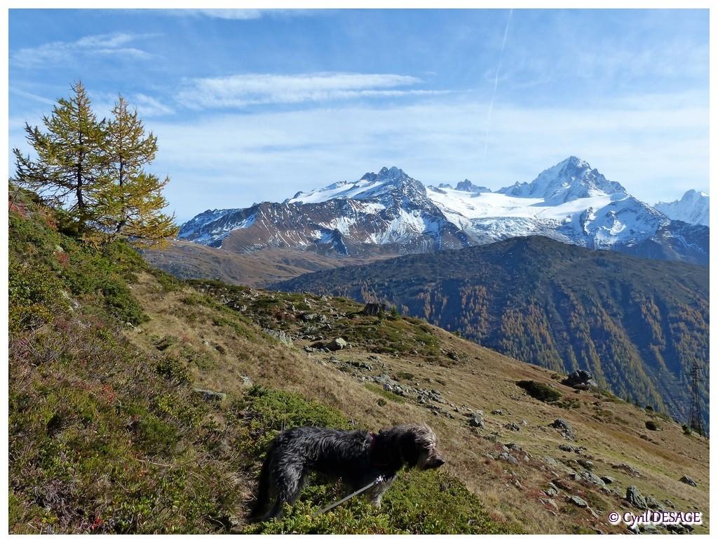 Octobre 2013, en rando sur la montagne de Loriaz.