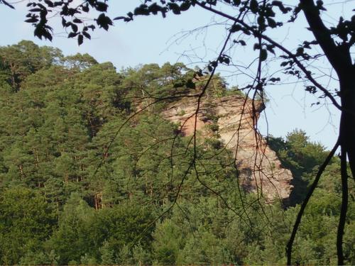 Ferienwohnung im Pfälzerwald, Sonja Anton Rinnthal, Pfalz, Südliche Weinstraße, Aussicht