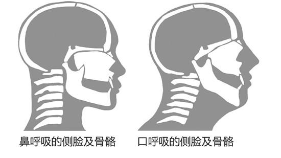 出典引用:wap.hangzhou.com.cn