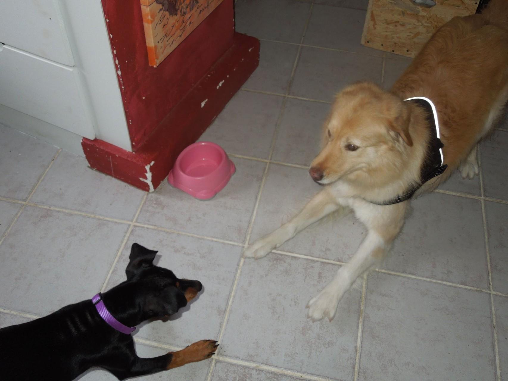 Ayla und Nuria