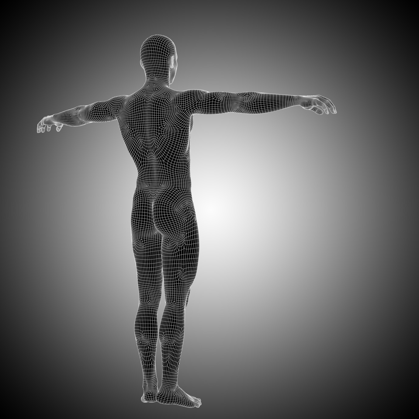 Fascia Body Matrix 2