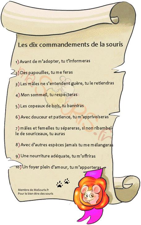 Les Dix commandements d'après MaSouris.fr