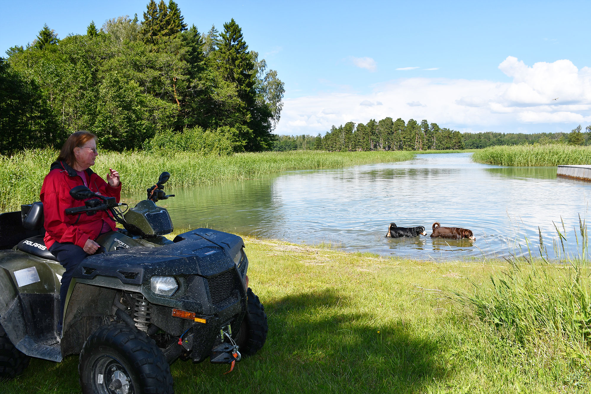 Wenn Vuokko ihre Hunde spazieren führt, fährt sie mit dem Quad voraus.