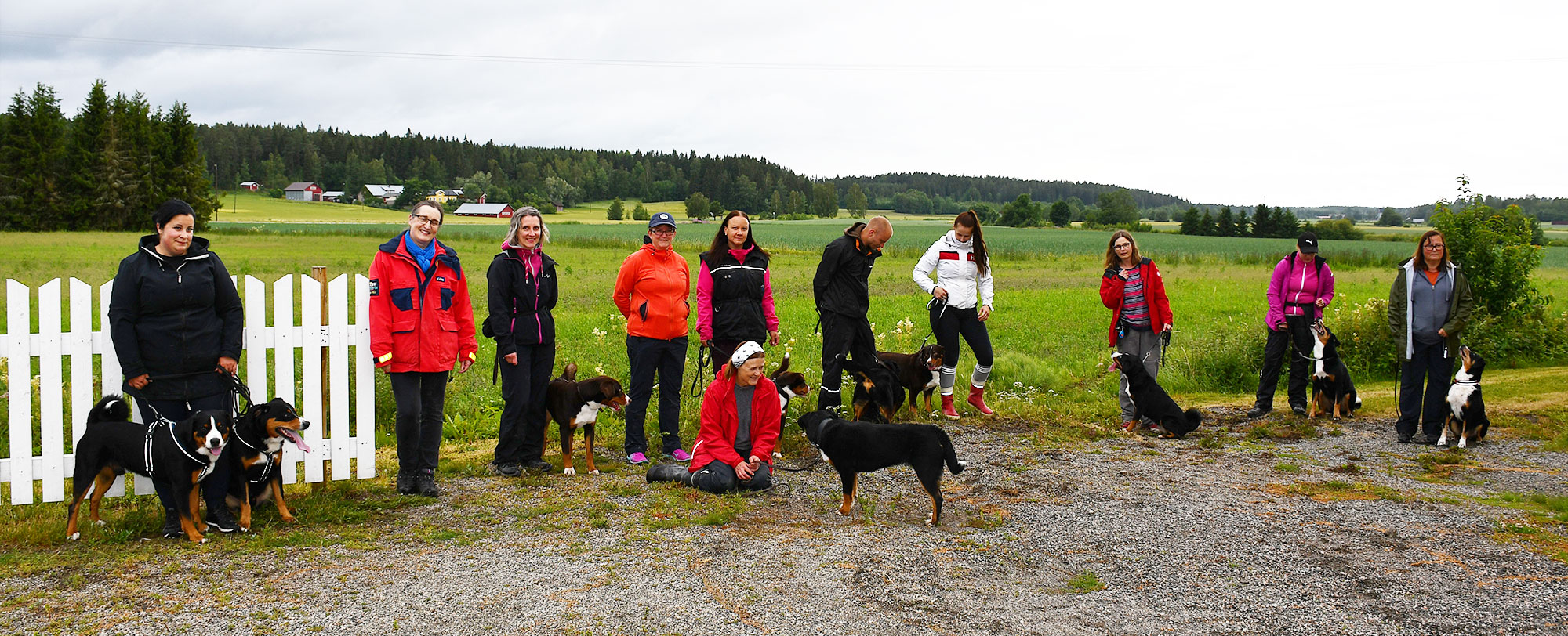 Appenzellertreffen in Finnland: Es war gar nicht so einfach, so viele Hunde und Menschen auf ein Bild zu bringen.