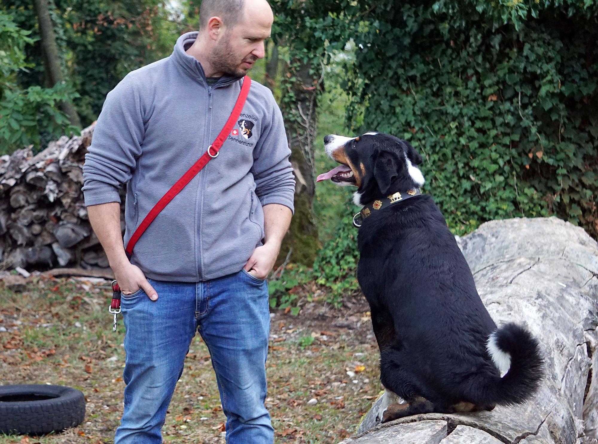 Hundeführer und Hund warten auf das Ergebnis.