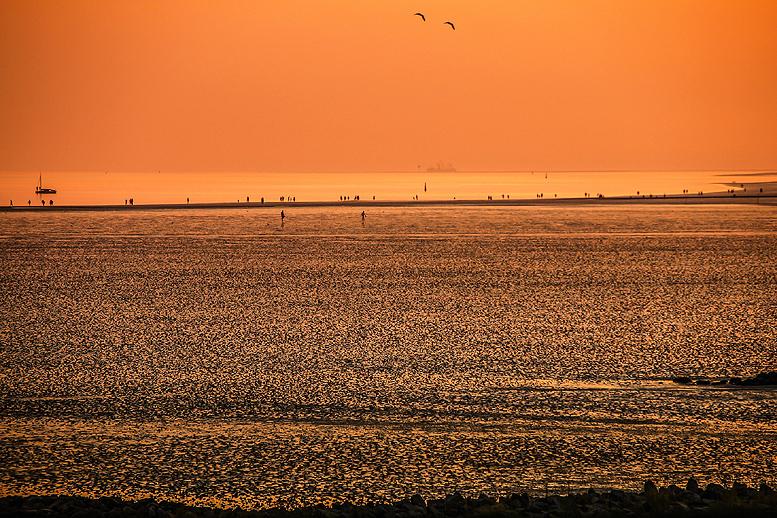 Nordfriesland: UNESCO Weltnaturerbe Wattenmeer / Nordseeferien in unseren Komfort-Ferienhäusern an der Nordsee