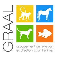 Logo du GRAAL