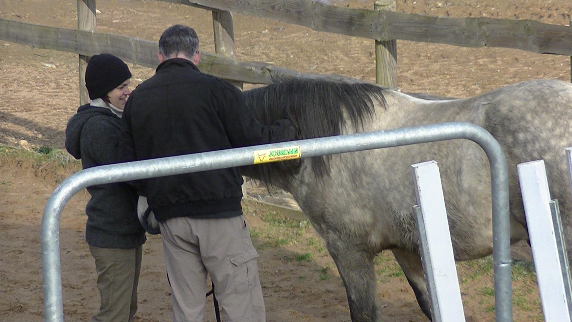 Moment ensemble avec le cheval