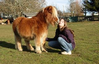 Zoé et son poney