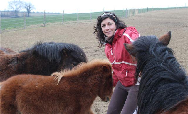 Claire et les poneys