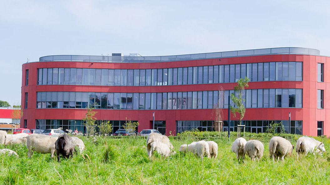 Ein besonderes Umfeld bietet der d.velop-Campus in Gescher