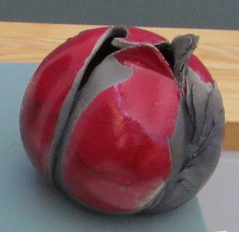 14-Chrysalide rouge