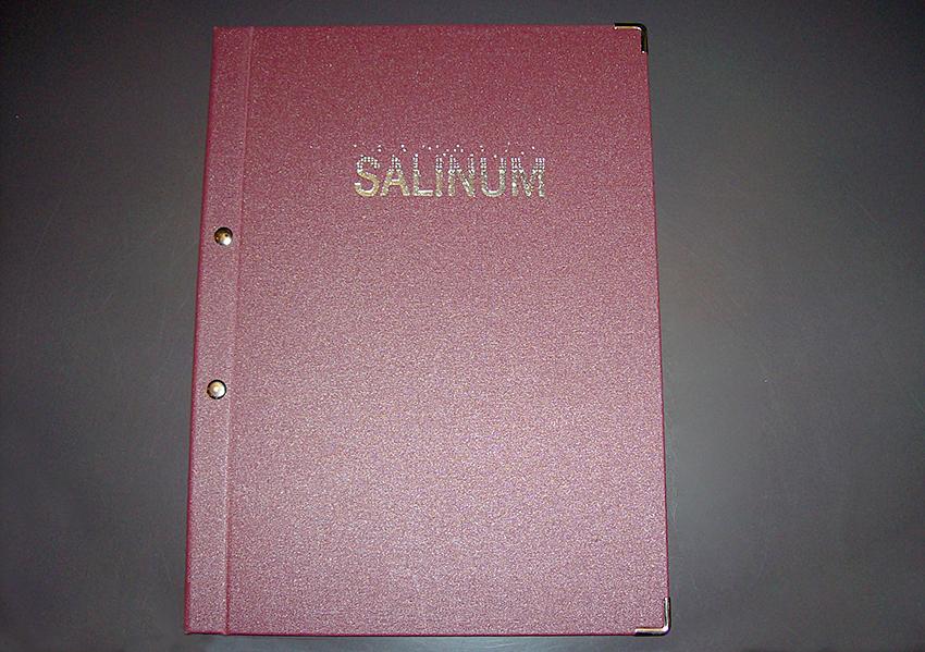 Speisekarte Salinum
